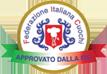FIC   Federazione Italiana Cuochi